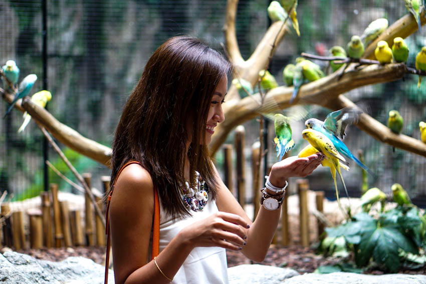 One of my highlights during the trip: feeding the parrots.  I was so scared at first but they're super harmless and they don't care, they just eat! I did it a lot of times because I super enjoyed it. My first few photos were so funny- I looked so scared and happy but around my fourth attempt I think you could see in the photos that I was genuinely enjoying already.