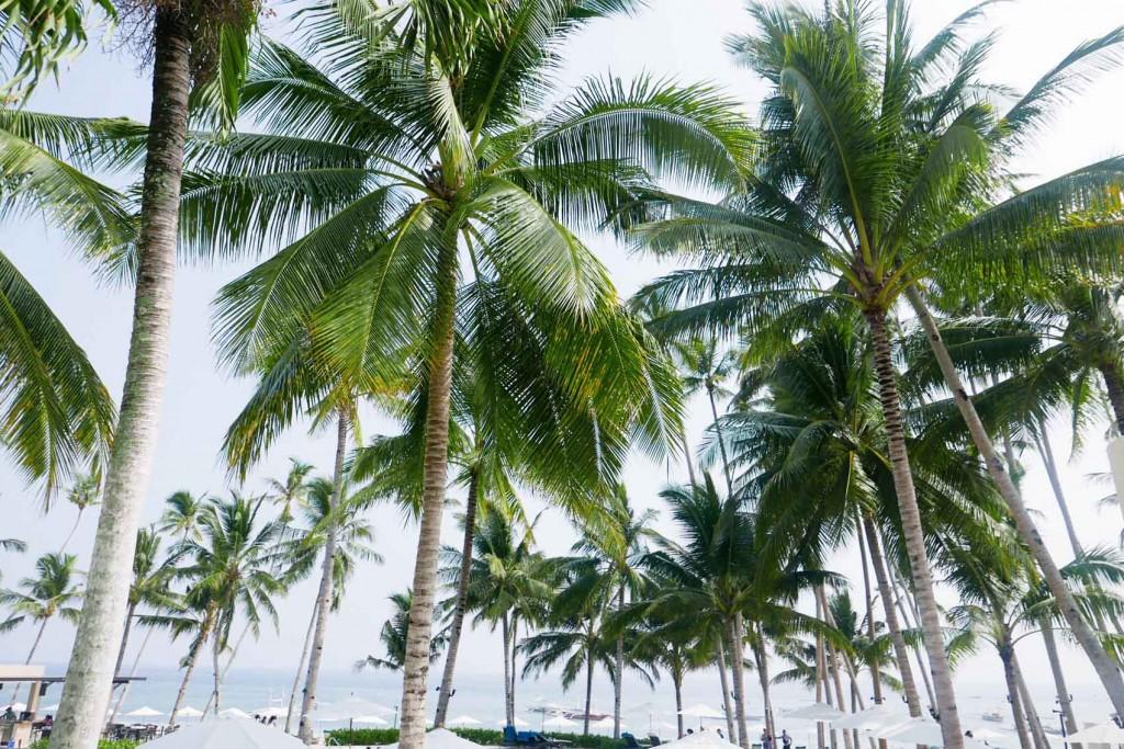 Henann Resort Bohol Laureen Uy 8