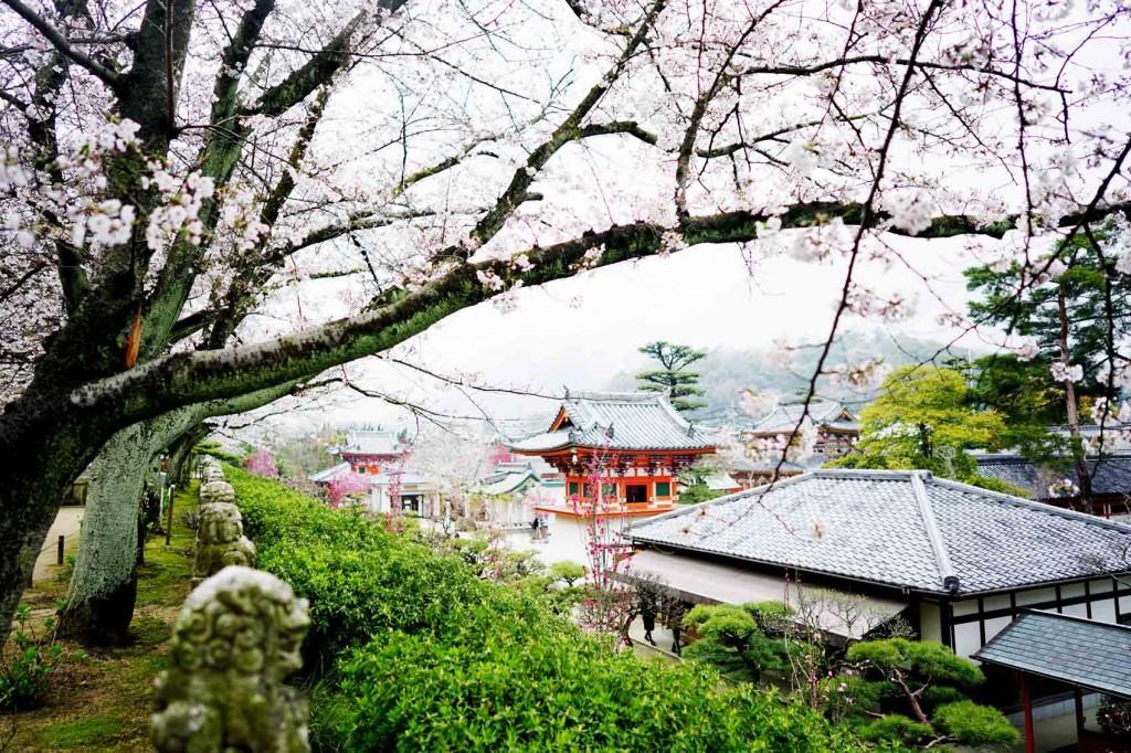Global Travel Blogger Summit Japan 10