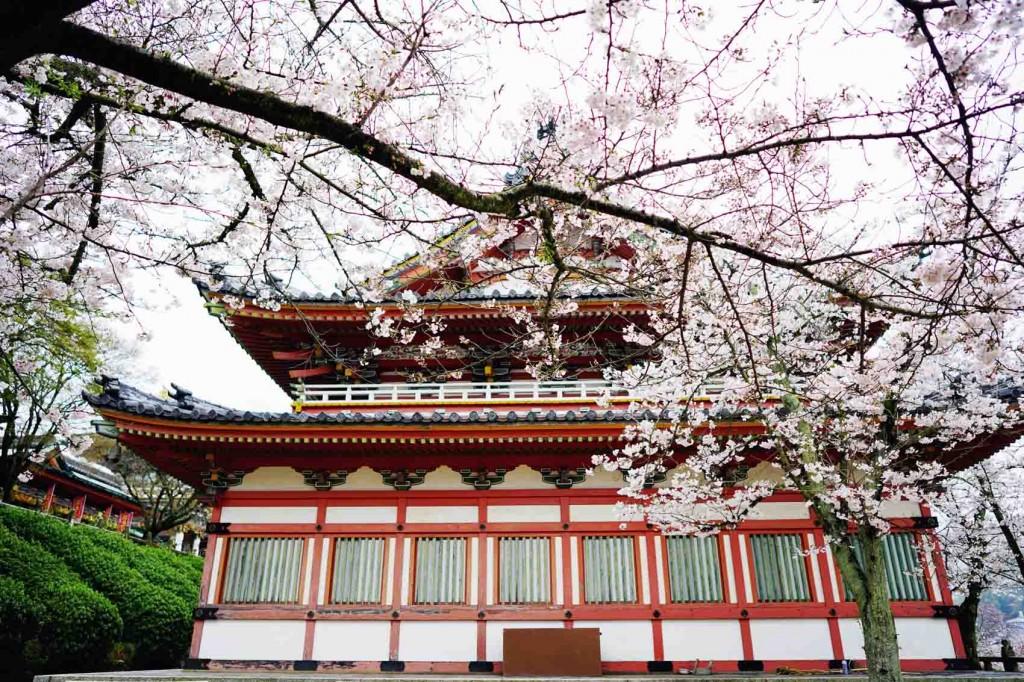 Global Travel Blogger Summit Japan 12