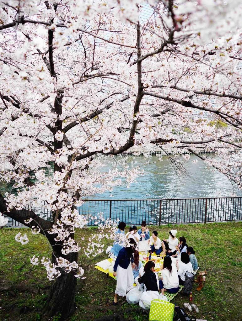 Global Travel Blogger Summit Japan 25