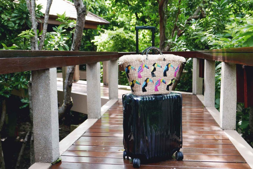 Traveil luggage cover