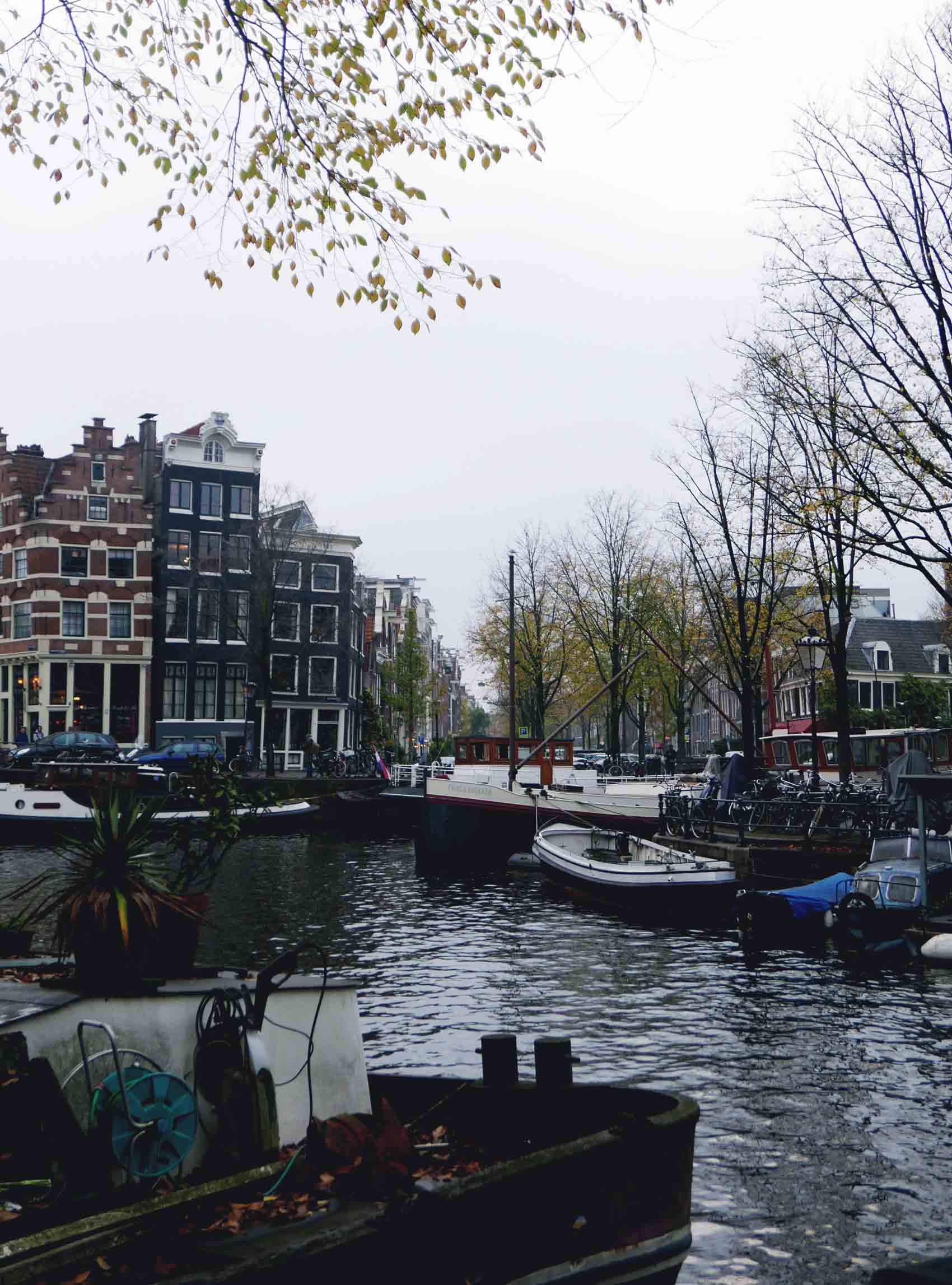 What to do in Amsterdam 111